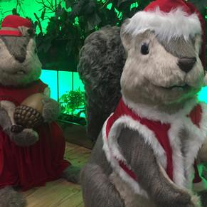 Natal dos Esquilos no Rio Design Barra