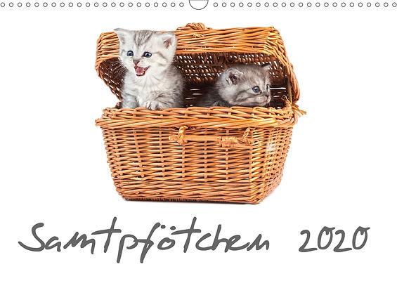 Katzenkaend