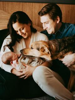 Sacramento-Lifestyle-Newborn-Photographer-1016.jpg