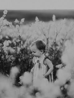 Sacramento-Mustard-Field-Family-Photographer-TinaSwainPhotography-1014.jpg