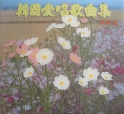 My Korean Flower