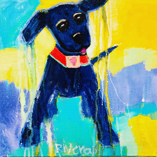 Artsy Pup