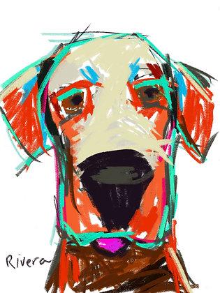"""""""Energetic Pup"""""""