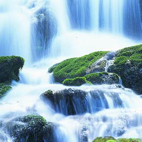 飲み水と健康な体(体の60%は水)