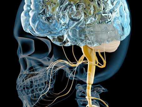 むちうちー4(脳脊髄液循環-頭痛)