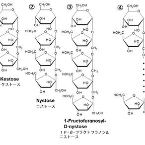 腸内環境を整えるフラクトオリゴ糖