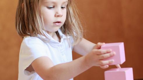 PRIMARY (3 yrs- Kindergarten)