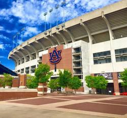 Auburn University 5
