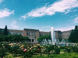 University of Washington 3