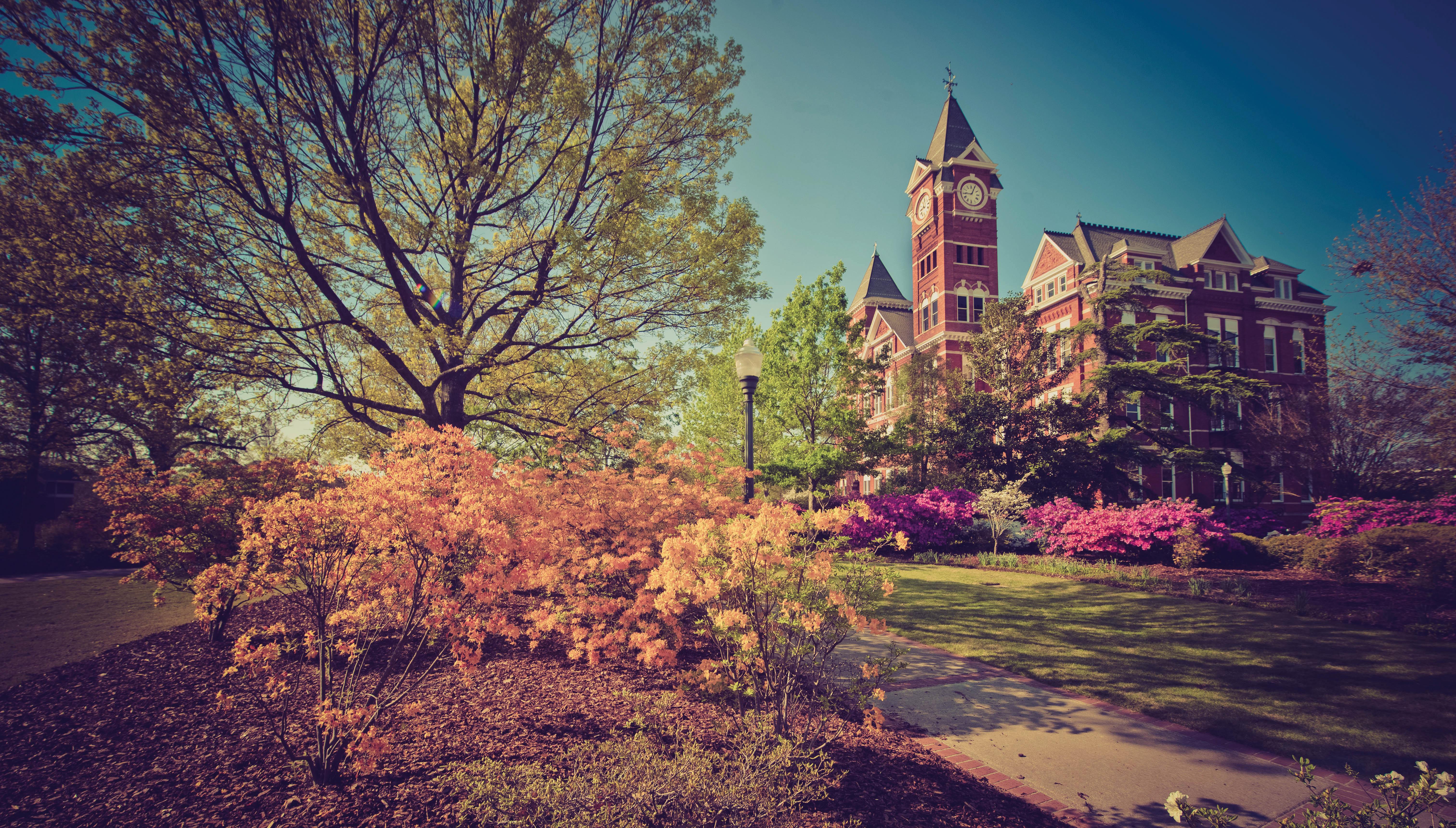Auburn University 4