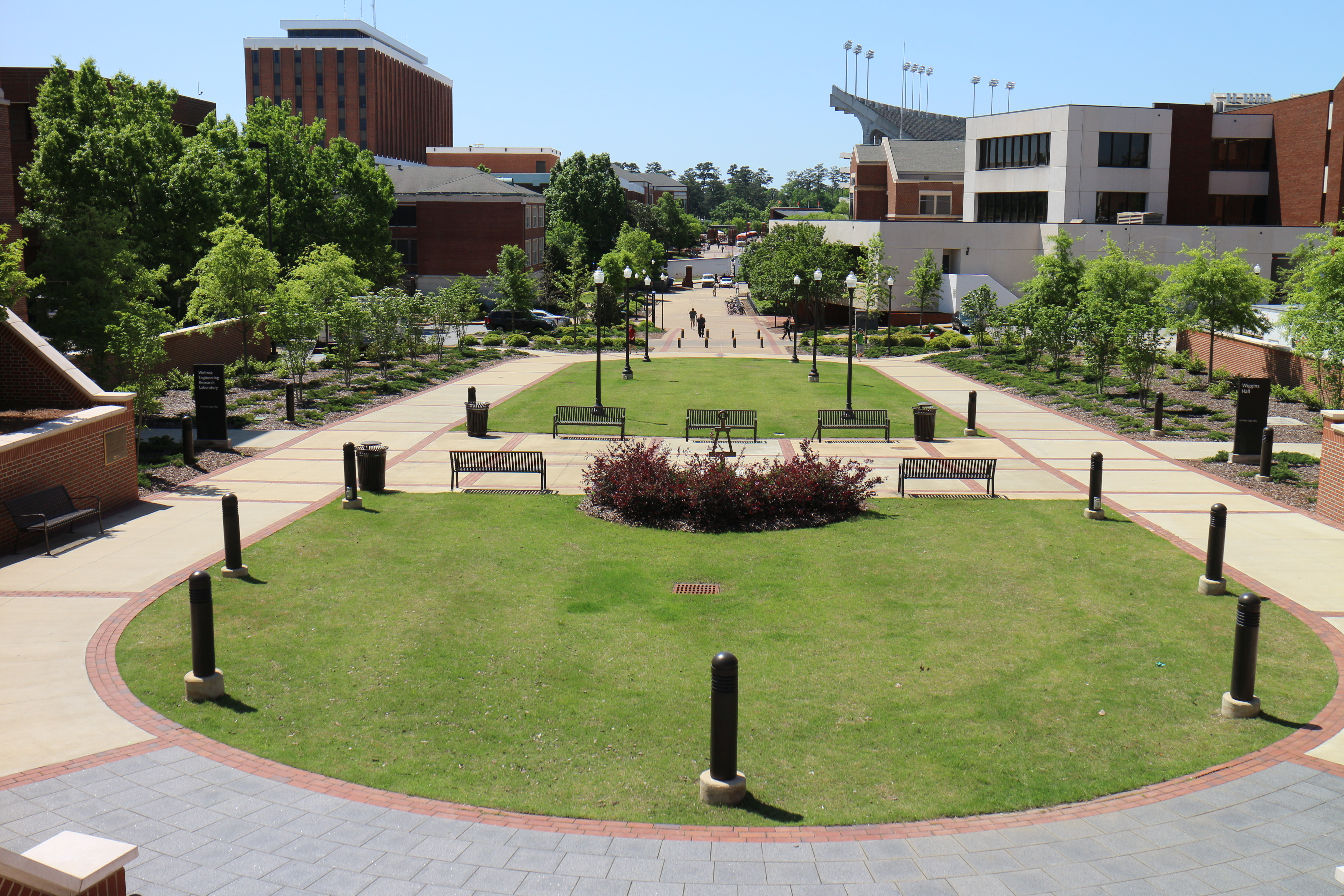 Auburn University 7