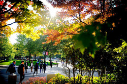 Northeastern University 3