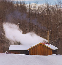 snowy_sugarhouse_edited.jpg