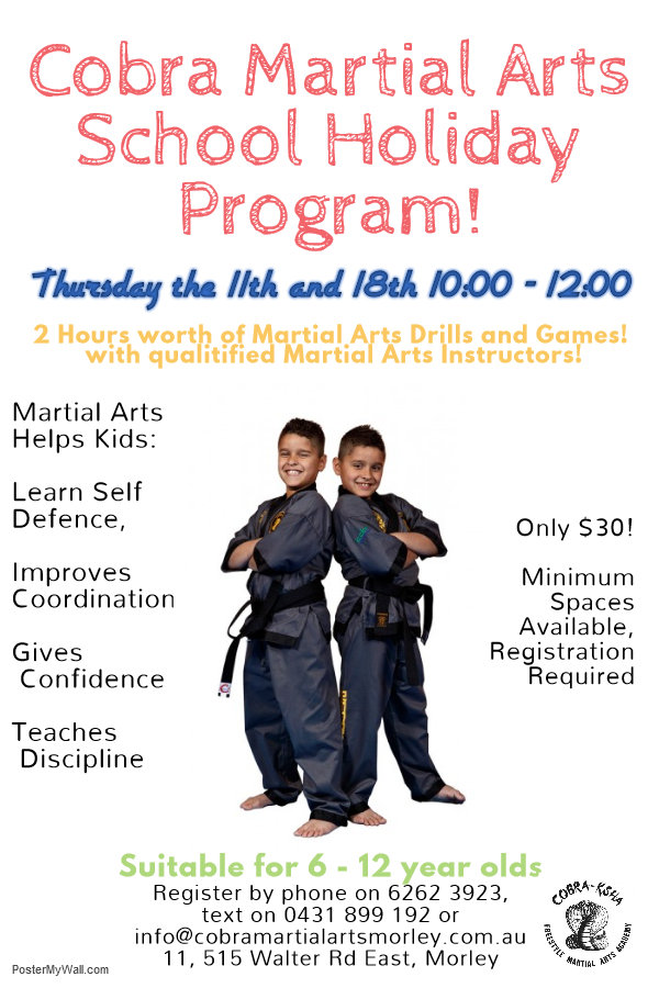 Martial Art School Holidays Kids