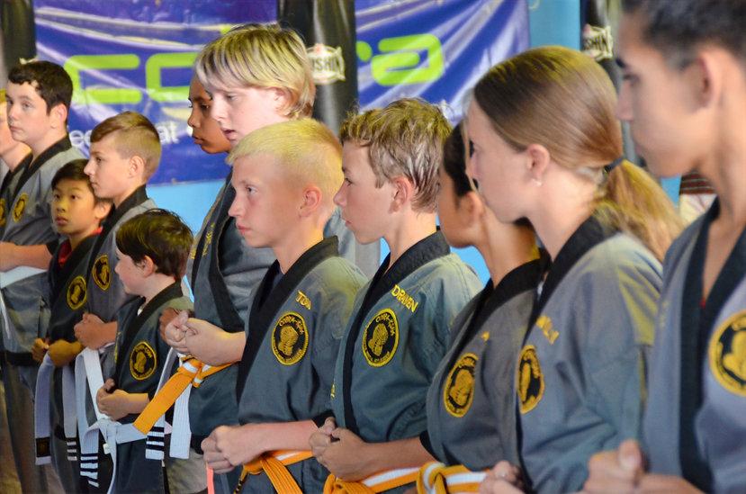 Young Adult Martial Arts.jpg