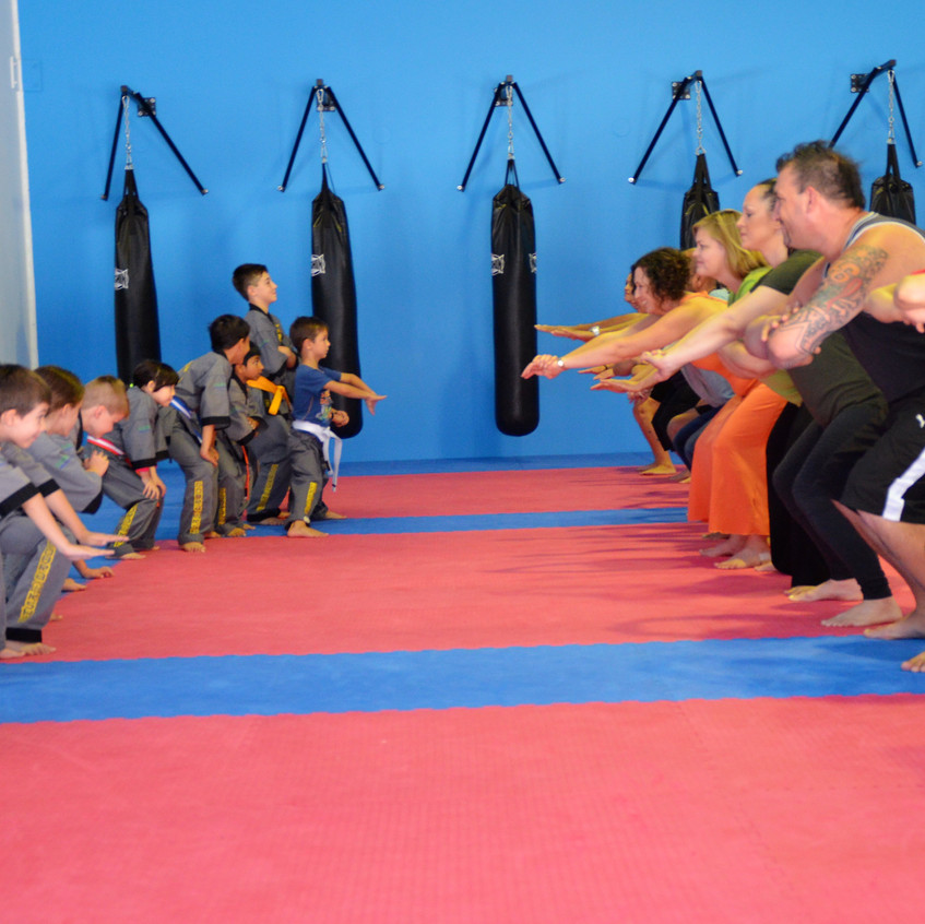 Martial Arts Kids and Adults
