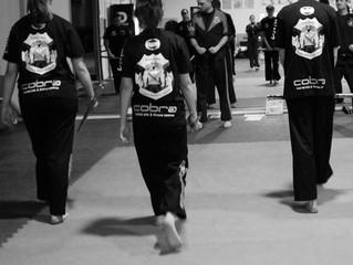 Eskrima at Cobra Martial Arts
