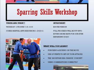 Sparing Skills Workshop