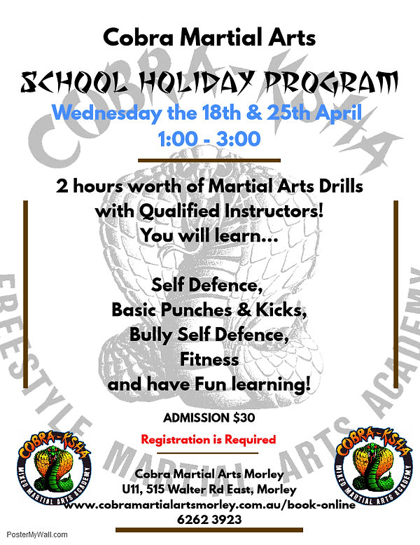 Martial Arts Shool Holiay Program