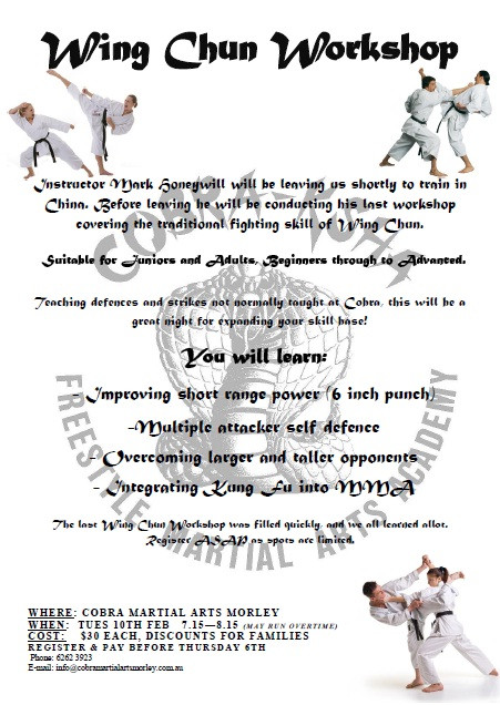 Wing Chun Workshop 2015.jpg