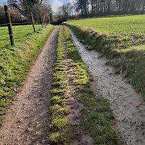 natuur wandeling veltem bovenberg bertem