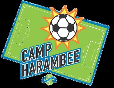 camp_harambee_logo-removebg.png