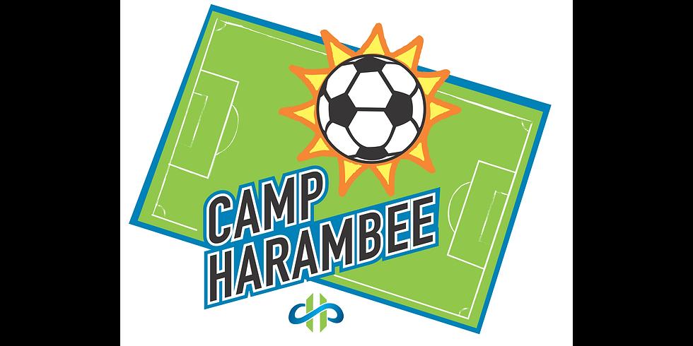 Camp Harambee