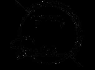Logo tomek 2_edited_edited.png
