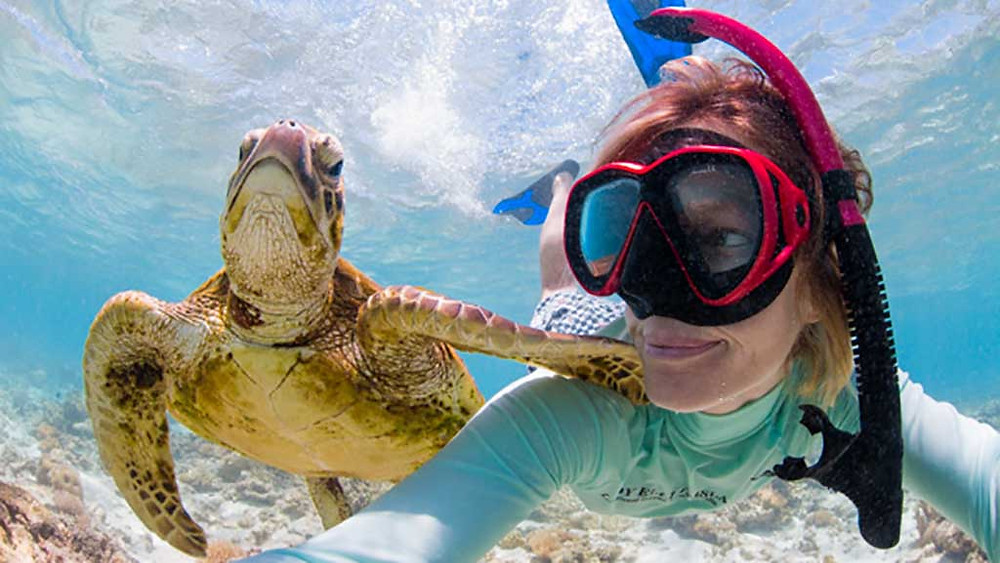 snorkel with seaturtle