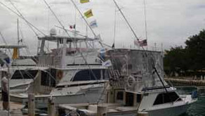 How to Choose Your Playa del Carmen Fishing Charter Boat