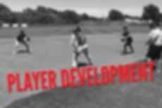 player development small.png