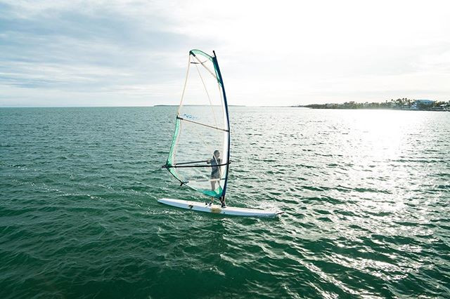 Windsurfed with wild dolphiiins and it w