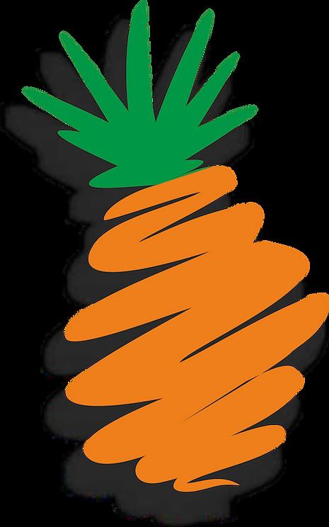 agencja_ananas.png