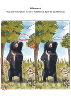 Sloth bear: differences