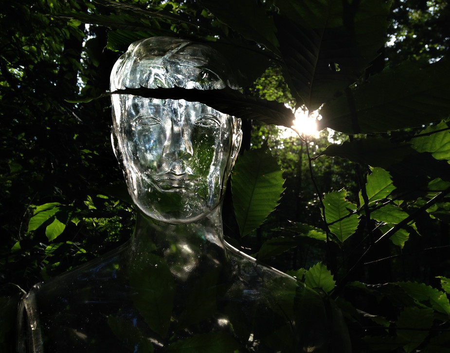 Clear Sculpture #25, 22 x 28 inches