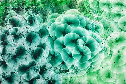 Verde Bouquet