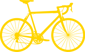 Premium Bicycle Service