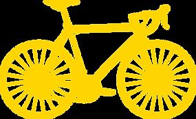 Premium Bicycle Service