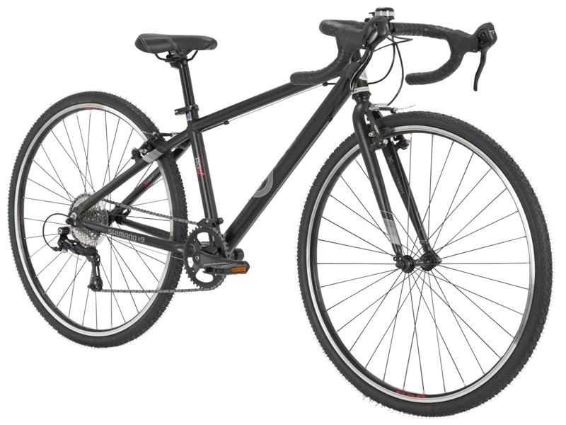 Byk E620 CXR - $749