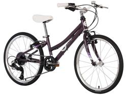 Byk E450x8 Purple - $539