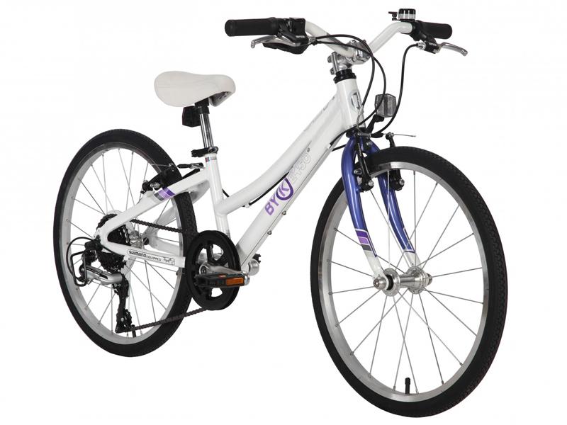 Byk E450x8 Steel Purple - $479