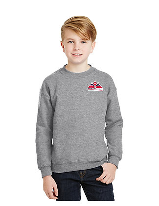 CREWNECK SWEATSHIRT-GREY