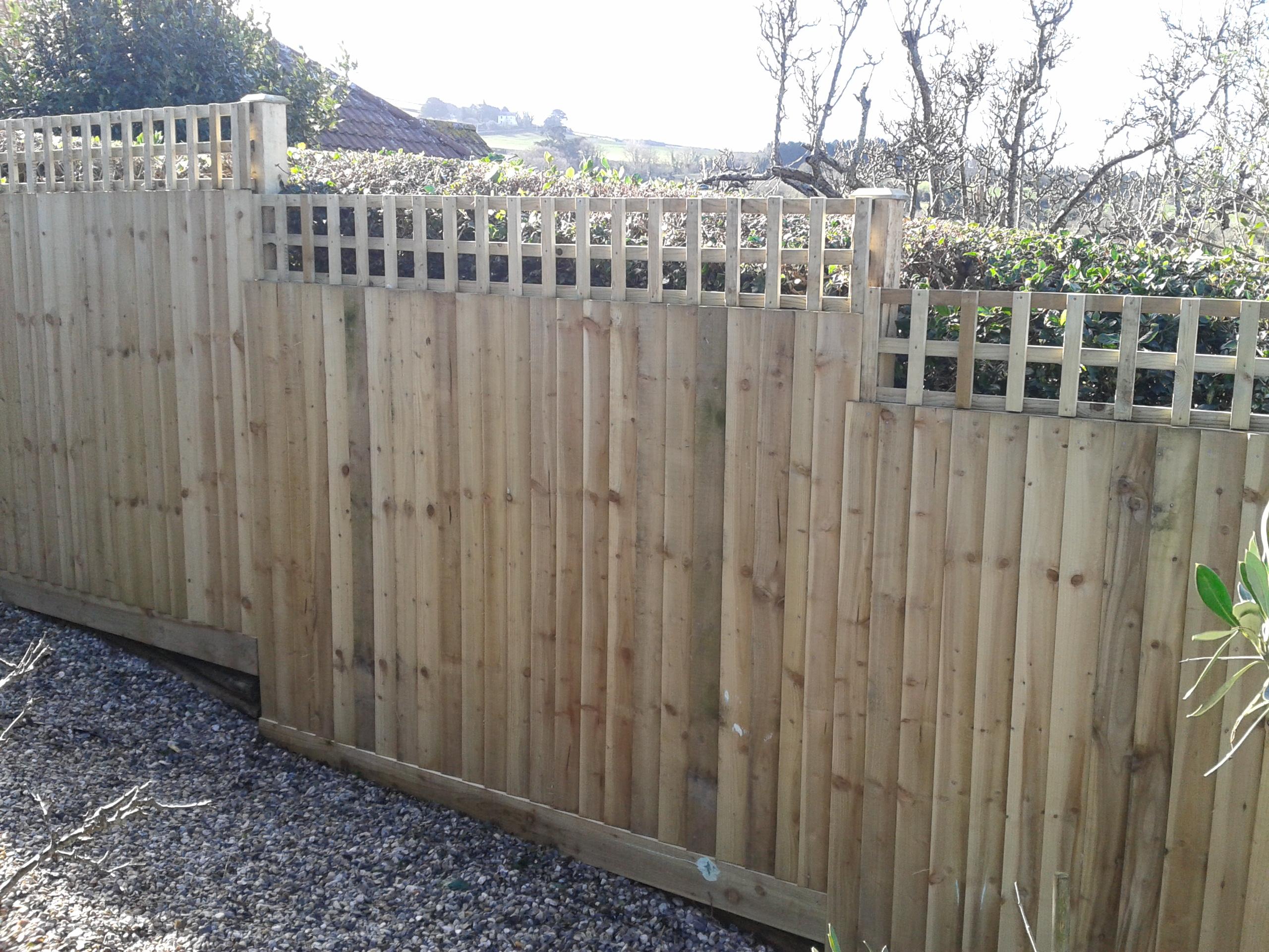 Trellis Fence