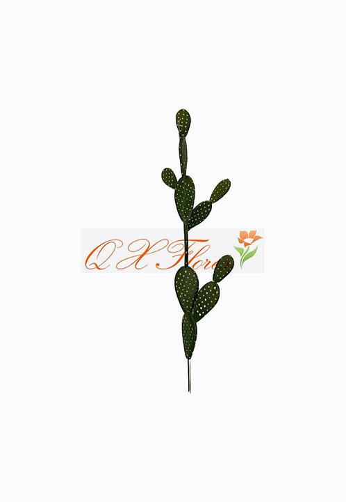 QX CACTO 93847