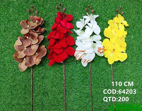QX ORQUIDEA 64203