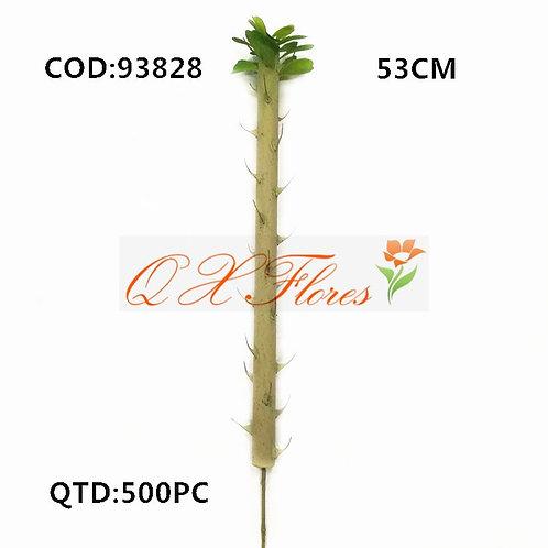 QX CACTO 93828