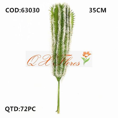 QX CACTO 63030