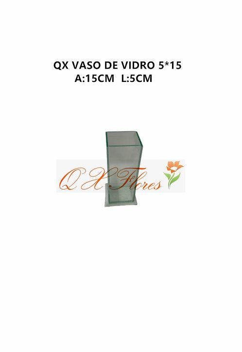 QX VASO DE VIDRO 5*15