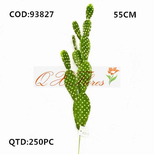 QX CACTO 93827