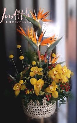T44- Canasta con Orquídeas